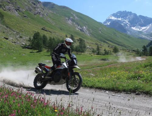 KTM Adventure 790R – Motor und Bremsen im Offroadtest