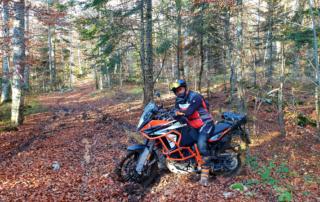 Adventurebiketour Jentlflow am TET Kroatien. gatschiger Wald